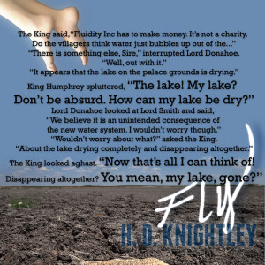 fly-meme-lake